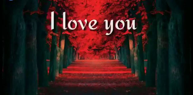 Love Messages And Quotes In English Status Video