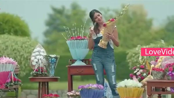 New Propose Love Status Video For Whatsapp